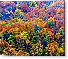 Colors To Winter 2 Acrylic Print by Marc Philippe Joly