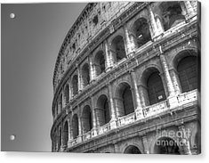Colosseum  Acrylic Print by Alex Dudley