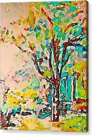 Colourful Cherry Tree Acrylic Print