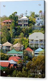 Colourful Queenslander Houses On A Steep Hillside  Acrylic Print by David Hill