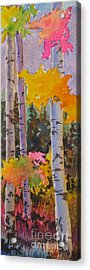 Colours Of The Rainbow Acrylic Print by Mohamed Hirji