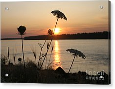 Columbia Gorge Sunset Acrylic Print by Cari Gesch