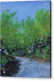 Columbia Trail Acrylic Print by Ken Ahlering