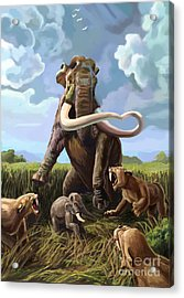 Columbian Mammoth And Saber-toothed Cats Acrylic Print by Spencer Sutton