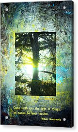 Come Into The Light With Nature Acrylic Print by John Fish