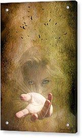 Come Into The Light Acrylic Print