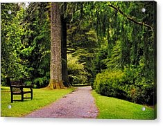Come Sit With Me. Benmore Botanical Garden. Scotland Acrylic Print by Jenny Rainbow
