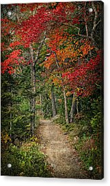 Come Walk With Me Acrylic Print by Priscilla Burgers