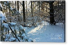 Come Warmth Of Winter's Sun Acrylic Print