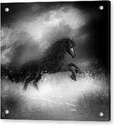 Comes A Dark Horse Acrylic Print by Hazel Billingsley