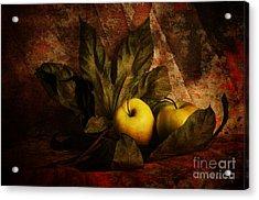 Comfy Apples Acrylic Print