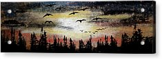 Comin' In Acrylic Print by R Kyllo