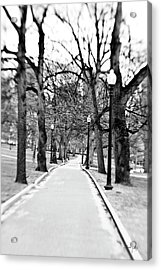 Commons Park Pathway Acrylic Print by Scott Pellegrin