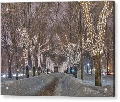 Commonwealth Ave Mall - Boston Acrylic Print by Joann Vitali