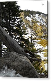 Acrylic Print featuring the photograph Composition At Lower Falls by Michele Myers