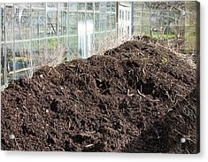 Compost Heap Acrylic Print by Ashley Cooper