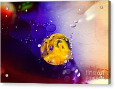 Conceive Acrylic Print by Charles Dobbs