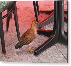 Acrylic Print featuring the painting Conch Chicken by Bob  George