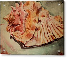 Acrylic Print featuring the painting Conch Contours by Jeffrey S Perrine