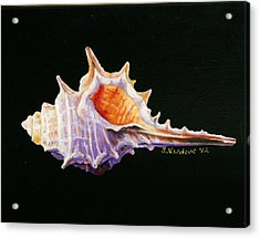 Acrylic Print featuring the painting Conch Shell by Sandra Nardone