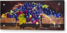 Concord Grapes On A Step Acrylic Print