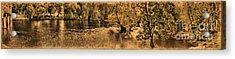 Concord River At Old North Bridge Acrylic Print by Nigel Fletcher-Jones