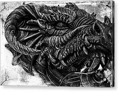 Concrete Dragon  Acrylic Print