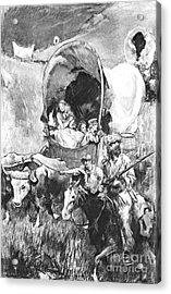 Conestoga Wagons 1890 Acrylic Print by Padre Art