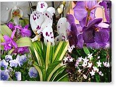 Confluent Flowers 1 Acrylic Print