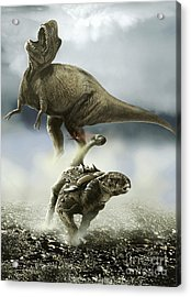 Confrontation Between A Club-tailed Acrylic Print