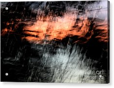 Confusion Acrylic Print by Jessica Shelton
