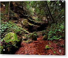 Acrylic Print featuring the photograph Conkles Hollow Gorge by Haren Images- Kriss Haren