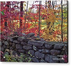 Connecticut Stone Walls Acrylic Print