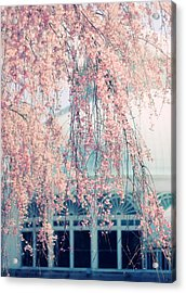 Conservatory  In Spring Acrylic Print by Jessica Jenney