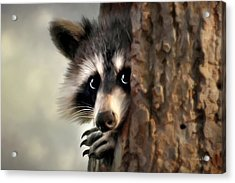 Conspicuous Bandit Acrylic Print by Christina Rollo