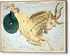 Constellation: Capricorn Acrylic Print by Granger