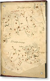 Constellation Of Leo Acrylic Print by British Library