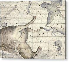 Constellation Of Pegasus Acrylic Print