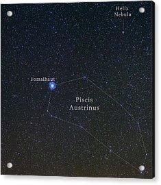 Constellation Piscis Austrinus Acrylic Print by Babak Tafreshi