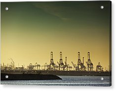 Container Cranes At Port Of Los Angeles Acrylic Print