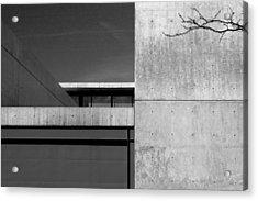 Contemporary Concrete Block Architecture Tree Acrylic Print