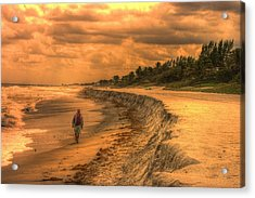 Soul Search Acrylic Print by Dennis Baswell