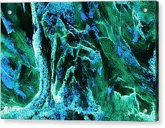 Contours 081 Abstract Acrylic Print by Natalie Kinnear