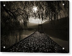 Acrylic Print featuring the photograph Contre Jour by Graham Hawcroft pixsellpix