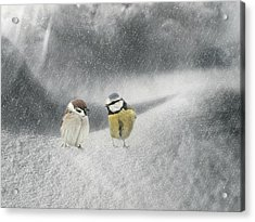 Conversation In The Snow Acrylic Print