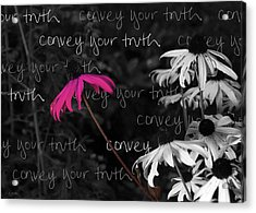 Acrylic Print featuring the photograph Convey Your Truth by Lauren Radke