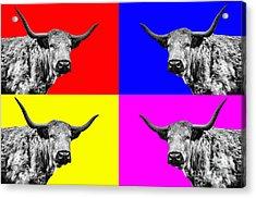 Coo Pop Art Acrylic Print by John Farnan