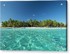 Cook Islands Palmerston Island Acrylic Print by Cindy Miller Hopkins
