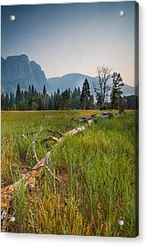 Cook's Meadow Acrylic Print