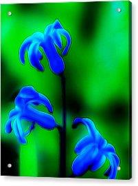 Cool Blue Acrylic Print by Thomas  MacPherson Jr